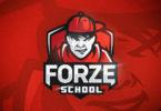 forZe презентуют новый проект – forZe School